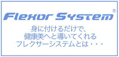 フレクサーシステムとは